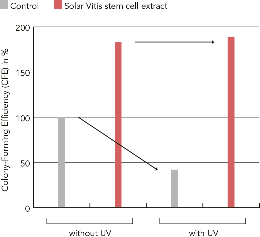 PhytoCellTec™ Solar Vitis/Vitis Vinifera Figure 2